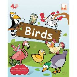 Flashcards – Birds